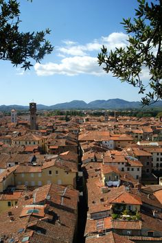 Italy Lucca province of Lucca, Tuscany