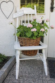 Geraniums and a chair...
