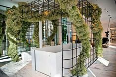 jeff leatham for alexander wang. lots and lots of baby's breath on a grid Retail Interior Design, Retail Store Design, Habitat Collectif, Jeff Leatham, New York Soho, Flower Installation, Pop Up Shops, Shop Interiors, Office Interiors