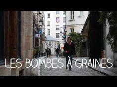 Les bombes à graines - Green Guerilla