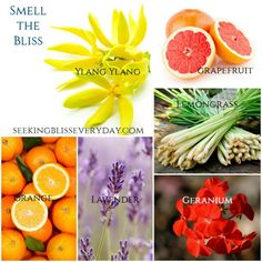 Bliss List – 6 Essential Oils to Promote Bliss