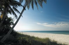 Paradise at Naples Beach, Florida #NaplesSquare