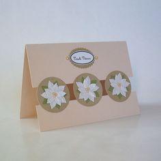 Christmas cards - white poinsettia