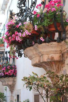 Flowers On Balcony . Flowers On Balcony . Beautiful Gardens, Beautiful Flowers, Beautiful Gorgeous, French Balcony, French Patio, Balcony Flowers, Purple Home, Balcony Garden, Tiny Balcony