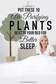 Difficulty sleeping leads to lower productivity, lack of energy and poor health.    Stress and anxiety cause most sleep-related issues. Many studies show that being surrounded by nature helps lower cortisol level and blood pressure. It also boosts immune function and triggers relaxation | https://dailyhealthpost.com/put-these-10-air-purifying-plants-next-to-your-bed-for-better-sleep/