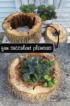 Fine Gardning: Creative DIY Garden Ideas!