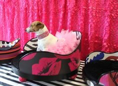Get in touch with your inner DIVA! Cute pet beds for cute dogs! www.smuccitoo.com