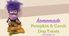 Pumpkin & Carob Treats