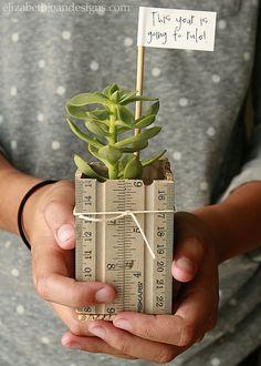 Ruler Succulent Planter 11 by Elizabeth Joan Designs