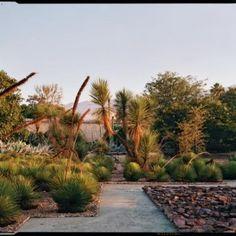 jardim botânico de oaxaca