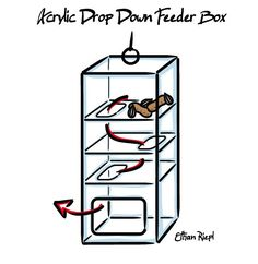 Acrylic Drop Down Feeder Box.  Fill with treats which work their way down the levels to the opening at the bottom.  And the front being openable to easily access for filling and cleaning.