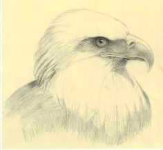 Mark Bornowski is an fine artist, writer, inventor, teacher and master in drawing and painting