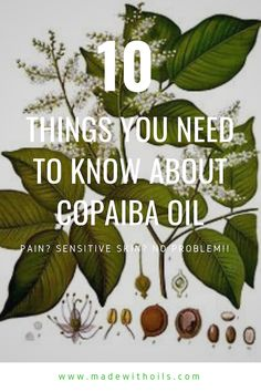 Copaiba Essential Oil how to use it to relieve pain and help sensitive skin. When I was suffering from severe and chronic joint pain a friend mentioned that I might want to try Copaiba essential oil for its well-documented pain-relieving properties. Copaiba Essential Oil, Essential Oils For Pain, Essential Oil Uses, Arthritis, Clear Skin Tips, Nail Polish, Pain Relief, Sensitive Skin, Teeth