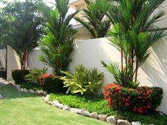 Backyard Landscaping Trees Plants Ideas For 2019 Florida Landscaping, Landscaping Trees, Tropical Landscaping, Front Yard Landscaping, Tropical Backyard, Tropical Gardens, Palm Trees Garden, Beautiful Gardens, Landscape Design