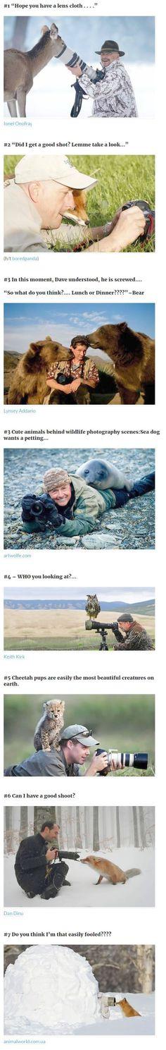 Amazing - Cute Unusual Animals List #follow
