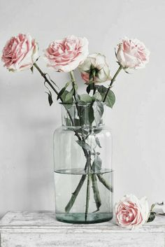 www.paper-thin-walls.com