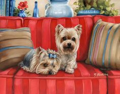 Yorkie Painting Garden Flag Dog Art Yorkshire Terrier by Brooke Faulder Yorkies, Yorkie Dogs, Chihuahua, Puppies, Yorshire Terrier, Silky Terrier, Chien Yorkshire Terrier, Creation Photo, Dog Paintings
