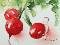 Original Watercolor Painting Radishes Vegetable Garden Veggie Still Life ACEO Kitchen Art Fruit Painting, Watercolour Painting, Watercolor Journal, Watercolor Images, Watercolours, Garden Drawing, Fruit Displays, Etsy Crafts, Office Art