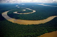 To get the most out of your rainforest experience, you have to either do a night walk, or a night boat ride with a guide and a spotlight to try to see. What A Beautiful World, Beautiful Places, Beautiful Scenery, Le Nil, Amazon River, Seen, Amazon Rainforest, Countries Of The World, Aerial View