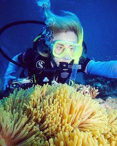 Great Barrier Reef 2h offshore Cairns Australia 2010   #greatbarrierreef #GBR #diving #cairns #aussie #underwater #underwaterphotography #travelporn #travelgram #bucketlist #travelingshoot #theworldismyplayground #traveladventure #travelphotography #natgeotravel #travel #traveler #backpacker #backpacking #globetrotter #AdventureVisuals #adventure #adventurer #addictedtotravel #traveladdict #worldtraveler #traveltheworld #peopleoftravel #repostapp #travelingshoot #scuba by valia82…
