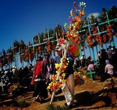 Celebrating Life. Dia de los Muertos
