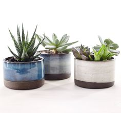Set of Three Ceramic Planters for Succulents par CorPottery sur Etsy
