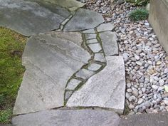 Broken stone path  ....combination of our big and very small slate for the future pathway.