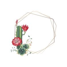 Colorful wedding frame with succulents and cacti. - Colorful wedding frame with succulents and cacti. The Effective Pictures We Offer You About cactus - Cactus Drawing, Cactus Art, Cactus Flower, Cactus Painting, Flower Diy, Diy Painting, Cactus Backgrounds, Wallpaper Backgrounds, Iphone Wallpaper