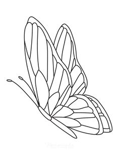 Butterfly Drawing Outline, Butterfly Stencil, Butterfly Coloring Page, Outline Art, Butterfly Painting, Buterfly Drawing, Butterfly Line Art, Butterfly Design, Printable Flower Coloring Pages