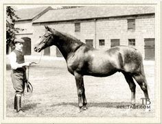 Bend Or, champion on the track and important sire and broodmare sire. Tapit's fourteenth generation sire. His own sire was Doncaster, but there has been controversy over the identity of his dam for decades.