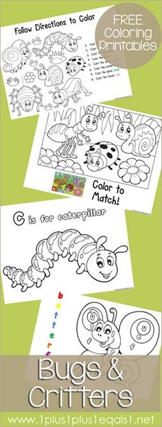 Bugs and Critters Coloring Printables {free} from @{1plus1plus1} Carisa