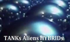 TOP SECRET - Dulce Base Alienígena, Tanques para o Desenvolvimento de Híbridos (VÍDEO)
