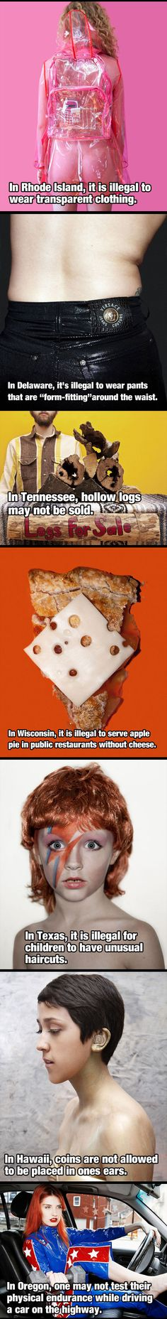 I don't want apple pie in Wisconsin. And I don't think the hair thing is illegal. Kids can't have weird hair at school. At least most of the schools I know.