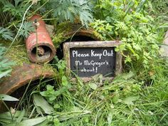 Robin and the Sage: Peter Rabbit's garden