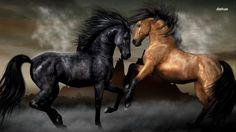 Horse Mind-blowing HD Wallpaper