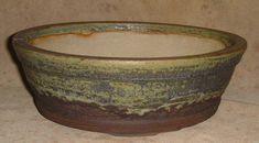 half glaze round pot  good idea for Eremophila 'Aurea'