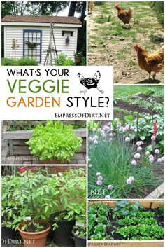 What's your veggie garden style? Here's a gallery of ideas to help you decide how you want to design your own veggie beds.