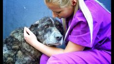 GIANT dog spent her life alone in a landfill... she only wanted LOVE!