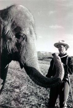 Bill Murray ... Elephant Man