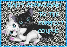Sweet kitten anniversary wishes for the purrfect couple. Free online Purrfect Couple Anniversary Wishes ecards on Anniversary Happy Anniversary My Love, Anniversary Message, Anniversary Cards, Wedding Anniversary, Happy Song, Romantic Cards, Joy And Happiness, Name Cards, Card Sizes