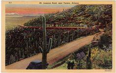 Mt. Lemmon Rd near Tucson