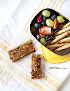 Homemade Lara Bars - MOMables® - Healthy School Lunch Ideas