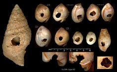 ancient shell beads | Early Upper Paleolithic