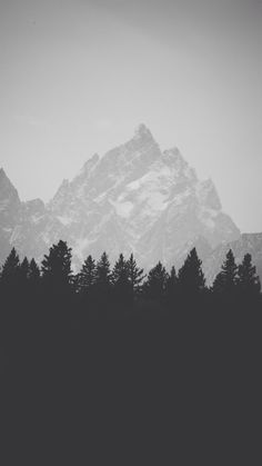 Mountain Top Behind Pine Forest Black And White iPhone 6+ HD Wallpaper