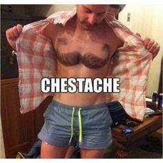 movember, laugh, god, chestach, mustach