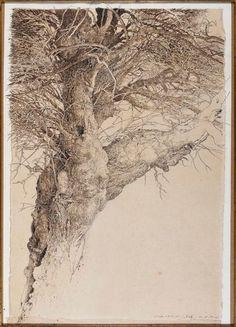 By Jean-Pierre Velly Studio d'albero IIIencre, crayon, sépia link