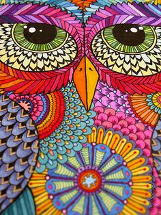 Mr Owl detail 1 | Flickr - Photo Sharing!