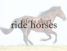 Life is short, ride horses!