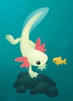 Axolotl by Karianne Hutchinson Illustration vector illustrator adobe art salamander water dragon fish goldfish fish tank: