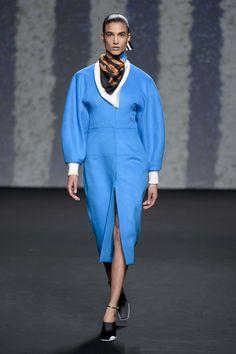 Christian Dior Automne/Hiver 2013, Haute Couture - Défilés (#15733)